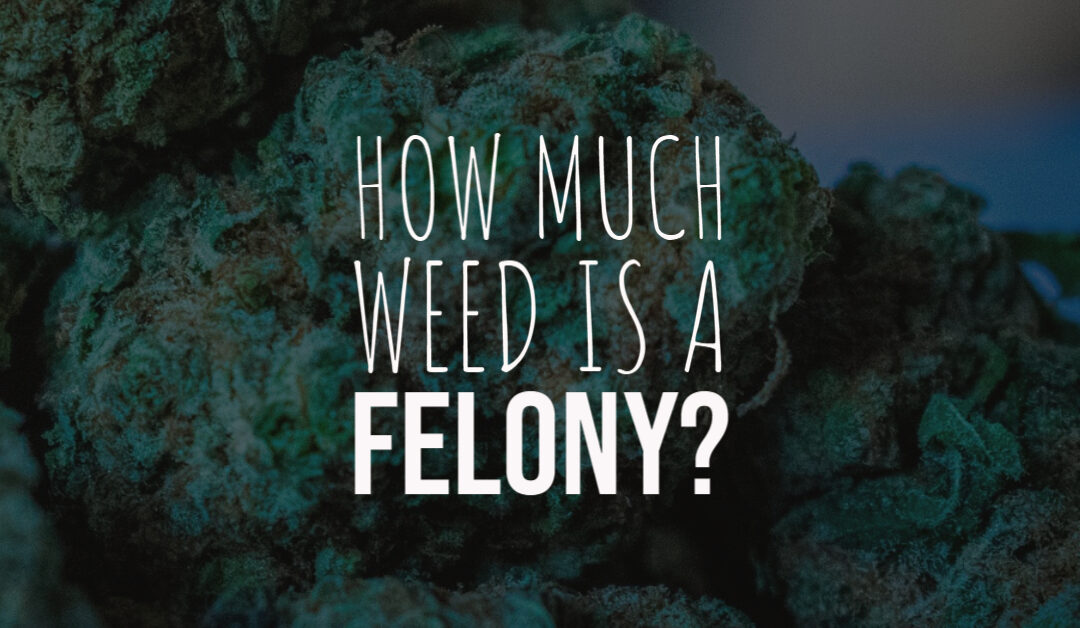 How Much Weed is a Felony?